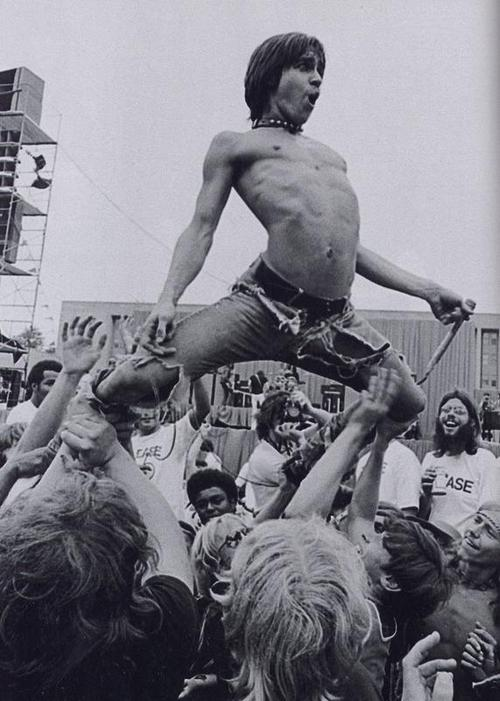 The Stooges: I Wanna Be Your Dog