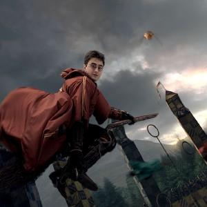 Du quidditch, oui, mais sans les balais volants