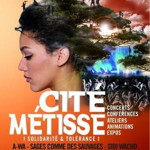 Election des TPE et Cité Métisse