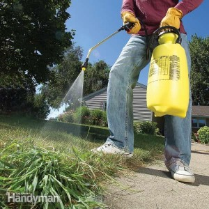 #7 Le monde merveilleux des Pesticides
