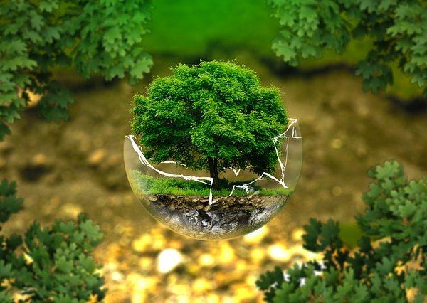 écologie-profonde