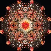 #6 Top 10 albums 2013 et mix (-Maxime Caouren-)