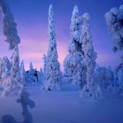 A la rencontre des cultures du monde : une étudiante Finlandaise